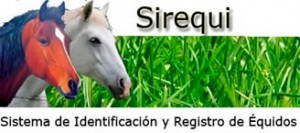 sirequi